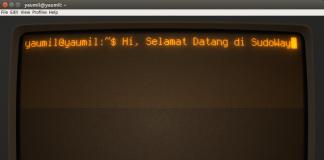 Install Cool Retro Term di Ubuntu