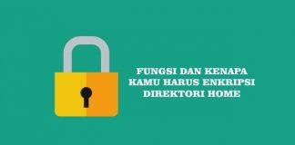 Fungsi dan Alasan Kenapa Enkripsi Home