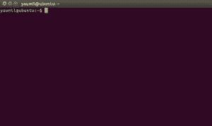Tampilan Terminal di Ubuntu