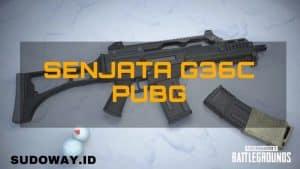 Senjata g36c pubg